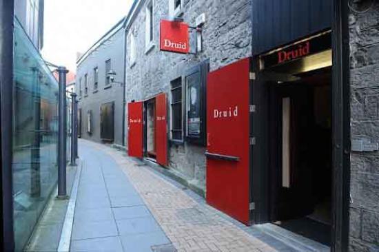 druid-theatre-company